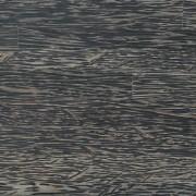 Sugar Deco Palm Plywood