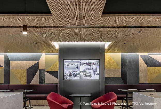 Acoustical and Decorative Ceiling Panels